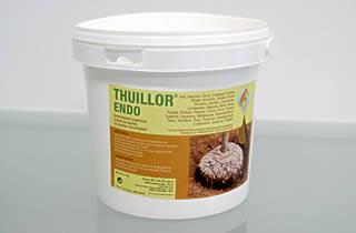 Thuilleaux - Thuillor ENDO