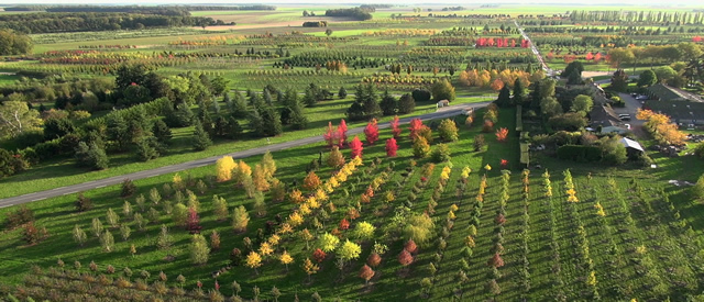 Vue aérienne des pépinères Thuilleaux
