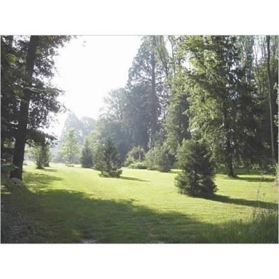 Parc Hutinel - Gretz Armainvilliers - 77- Seine-et-Marne