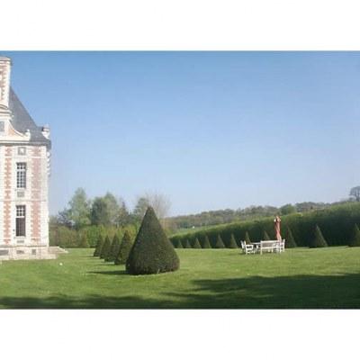 Ifs  - Château du Val d'Arques - St Eustache la Forêt - 76- Seine-Maritime